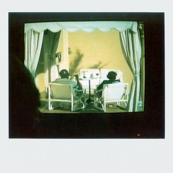 Magnolia Soto. Apuntes sobre el consumo de imágenes de paisaje 1. 2001. Polaroid. 8,8 X 10,7cm.