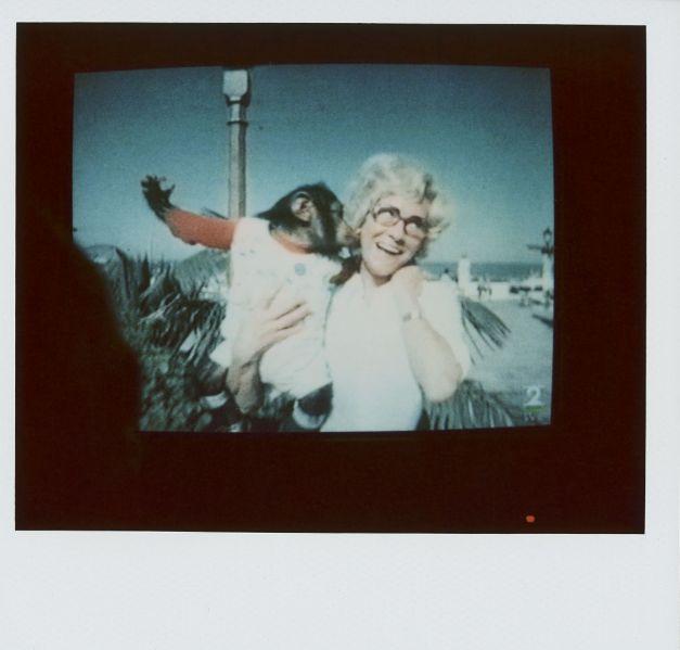 Magnolia Soto. Apuntes sobre el consumo de imágenes de paisaje 17. 2001. Polaroid. 8,8 X 10,7cm.
