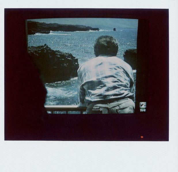Magnolia Soto. Apuntes sobre el consumo de imágenes de paisaje 19. 2001. Polaroid. 8,8 X 10,7cm.