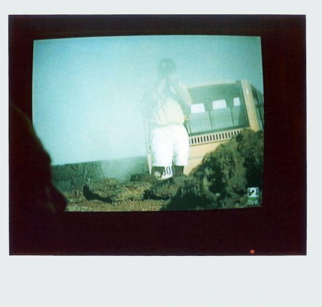 Magnolia Soto. Apuntes sobre el consumo de imágenes de paisaje 5. 2001. Polaroid. 8,8 X 10,7cm.