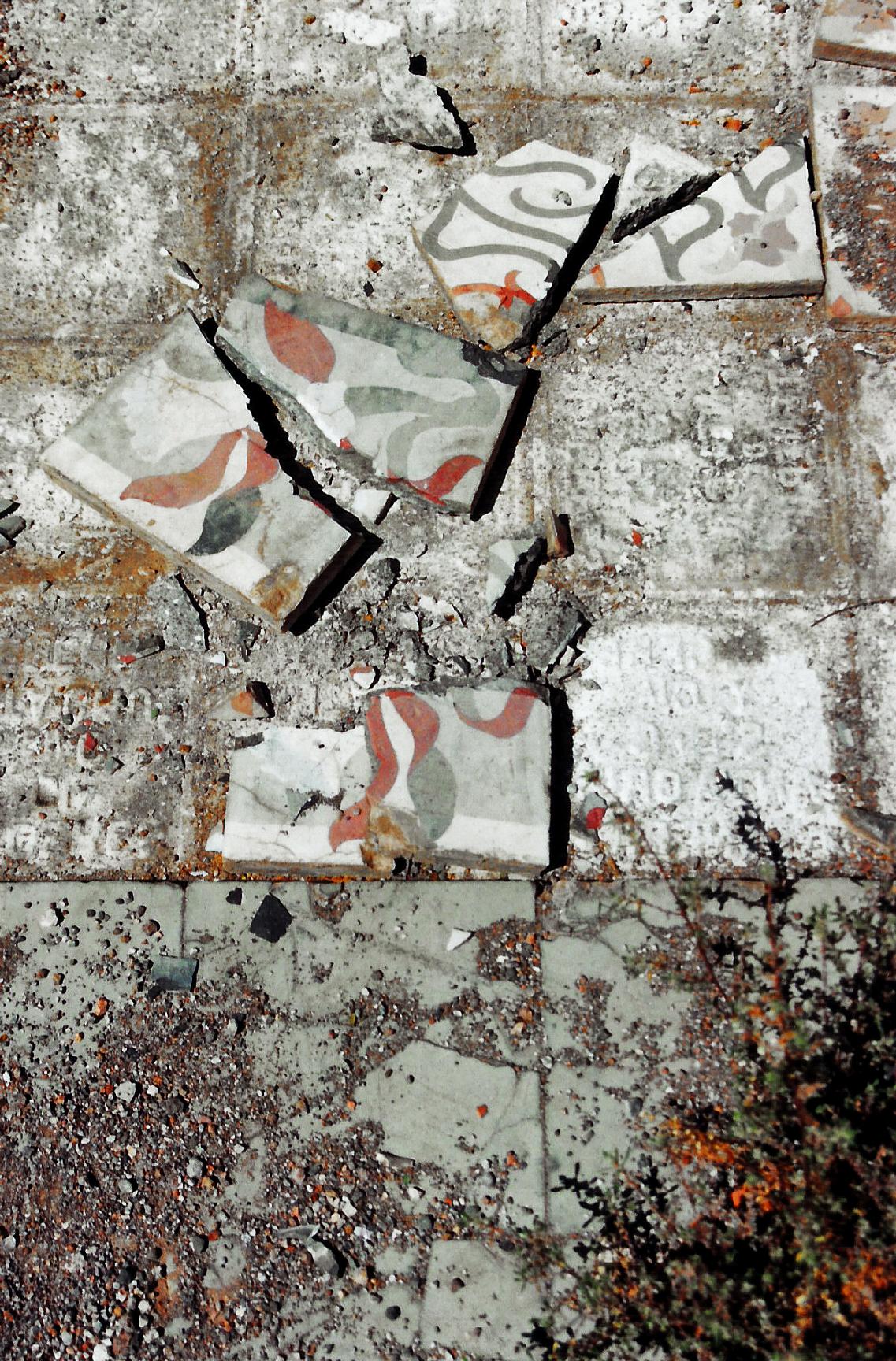 Magnolia Soto. Sin título. 1999. Baldosas de cemento hidráulico. 20 x 20 x 5 cm. cada una. Medidas variables (proceso)